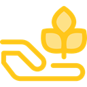 Tree, nature, gardening, Sprout, Growing Seed, Ecology And Environment, Hands And Gestures, Farming And Gardening Gold icon