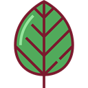 leaves, Botanical, Leaf, nature, leave, garden, plant MediumSeaGreen icon