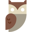 Animals, bird, hunter, owl Sienna icon