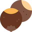 food, vegetarian, Almond, Food And Restaurant, vegan, Healthy Food, Nuts, Hazelnuts SaddleBrown icon