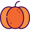 food, pumpkin, organic, diet, vegetarian, vegan, Healthy Food, Food And Restaurant Tomato icon