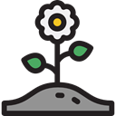 Flower, nature, petals, blossom, Botanical, Poppy, Ecology And Environment Black icon