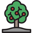 Tree, Fruit, nature, leaves, trees, Tools And Utensils, Growing, Fruit Tree, Farming And Gardening Black icon