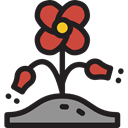 Poppy, Ecology And Environment, Flower, nature, petals, blossom, Botanical Icon