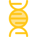 education, Biology, dna, Deoxyribonucleic Acid, Dna Structure, Genetical, science, medical Gold icon