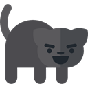 pet, halloween, horror, Terror, Animals, spooky, Black cat, scary, fear DarkSlateGray icon