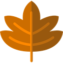 plant, Leaf, nature, halloween, garden, maple leaf, Botanical Chocolate icon
