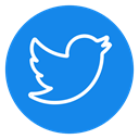 media, Social, tweet, twitter icon, network, Connection, bird DodgerBlue icon