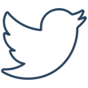 media, network, Connection, bird, Social, tweet, twitter icon Black icon