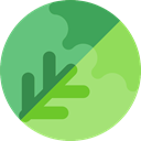 food, Fruit, organic, diet, vegetarian, Healthy Food, Cabbage, Cucumbers, Food And Restaurant MediumSeaGreen icon