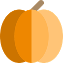 organic, diet, vegetarian, vegan, Healthy Food, Food And Restaurant, food, Fruit, pumpkin LightSalmon icon