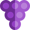 Bouquet, Food And Restaurant, Berries, grape, Berry, Grapes, food, Fruit, fruits MediumOrchid icon