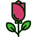 Flower, nature, rose, petals, blossom, Botanical Icon