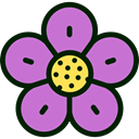 Flower, nature, petals, blossom, Botanical Orchid icon