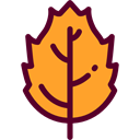fall, Leaf, nature, season, autumn, Botanical Goldenrod icon