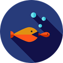 competition, Seo And Web, marketing, seo, fishes DarkSlateBlue icon