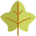 Botanical, garden, season, maple leaf, autumn, plant, fall, Leaf, nature DarkKhaki icon