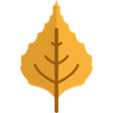 miscellaneous, fall, Leaf, nature, season, autumn, Botanical Goldenrod icon