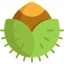 food, nature, organic, nut, natural, seed, Food And Restaurant, Hazelnut, Seeds, Nuts, Hazelnuts YellowGreen icon