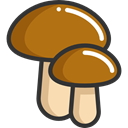 food, Muscaria, Food And Restaurant, Mushroom, nature, Mushrooms, Fungi DarkGoldenrod icon