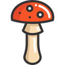 food, Mushroom, nature, Fungi, Muscaria, Food And Restaurant Black icon