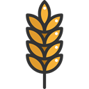 food, branch, nature, leaves, Barley, Wheat, Food And Restaurant Black icon