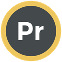 adobe, premiere pro icon, Format, Extension DarkSlateGray icon