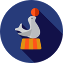Animal, seal, zoo, Animals, Circus, carnival, entertainment, Fairground DarkSlateBlue icon