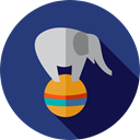 Fairground, Animals, Circus, mammal, carnival, Animal, elephant, zoo DarkSlateBlue icon