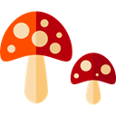food, Mushroom, nature, Fungi, Muscaria, Cultures Black icon