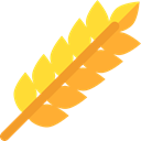 leaves, Barley, Wheat, Food And Restaurant, food, branch, nature Goldenrod icon