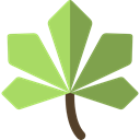 plant, Leaf, nature, halloween, garden, maple leaf, Botanical DarkKhaki icon