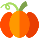 food, Fruit, pumpkin, organic, diet, vegetarian, vegan, Healthy Food, Cultures OrangeRed icon