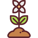 Flower, nature, petals, blossom, Botanical, Poppy, Ecology And Environment Icon