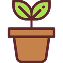 plant, Leaf, nature, leave, garden, leaves, Botanical Icon