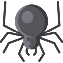 Arachnid, Animal Kingdom, insect, spider, Animals DarkSlateGray icon