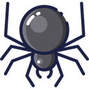 insect, spider, Animals, Arachnid, Animal Kingdom MidnightBlue icon