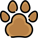 Cat, Animal, dog, zoo, Animals, Pawprint Peru icon