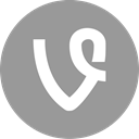 online, Social, Vine, media DarkGray icon