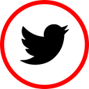 media, online, twitter, Social Red icon