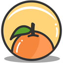 Orange, health, nutrition Khaki icon