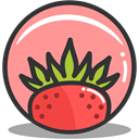 strawberry, summer, nutrition LightSalmon icon