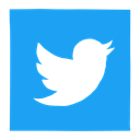 media, network, twitter, social media, Social, tweet, twitter bird DodgerBlue icon