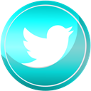 twitter, Social, media, Contact, web DarkTurquoise icon