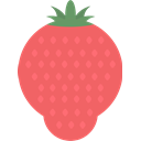 Fruit, strawberry Salmon icon