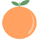 Orange, Fruit SandyBrown icon