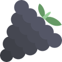 Fruit, Grapes Icon