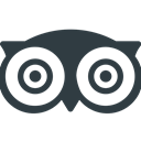 Social, tripadvisor, media, Logo DarkSlateGray icon