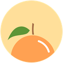 Citrus, Orange, health, food, nutrition NavajoWhite icon