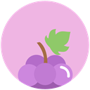 nutrition, food, Grapes Thistle icon